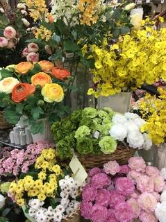 春シルク黄色.JPG