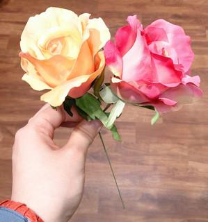 aris-rosepic01.jpg