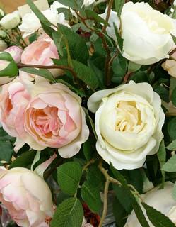 dion-rose01.jpg