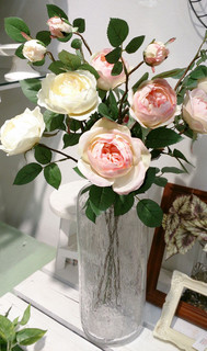 dion-rose02.jpg