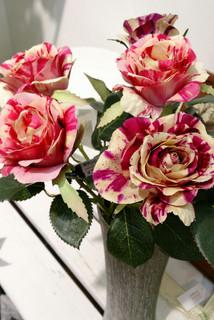 mable-rose01.jpg