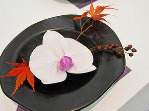 orchid_03.jpg