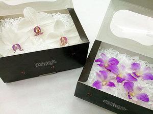 orchid_05.jpg